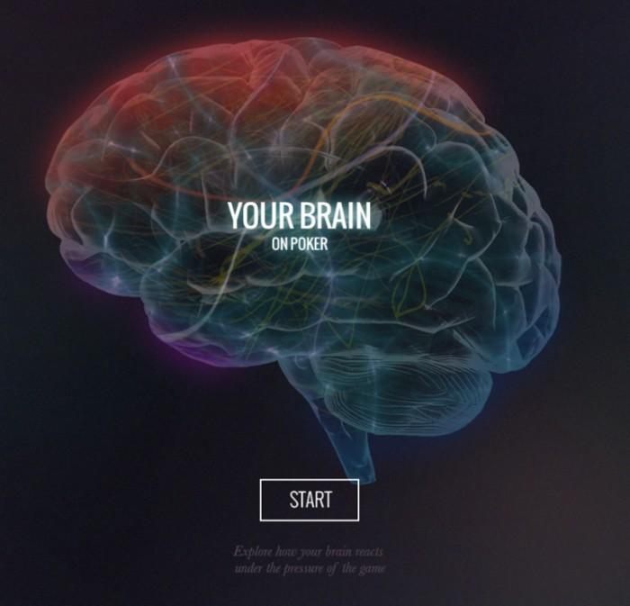 your-brain-on-poker_55099e11ae40e_w1500
